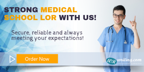 professional medical lor editing services
